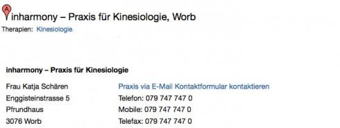 Muster eines Provisorischen Eintrags auf PraxisCheck.ch